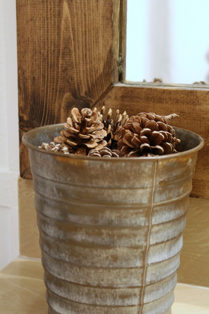 pail-with-pine-cones