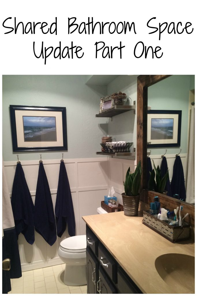 Shared bathroom space update part one