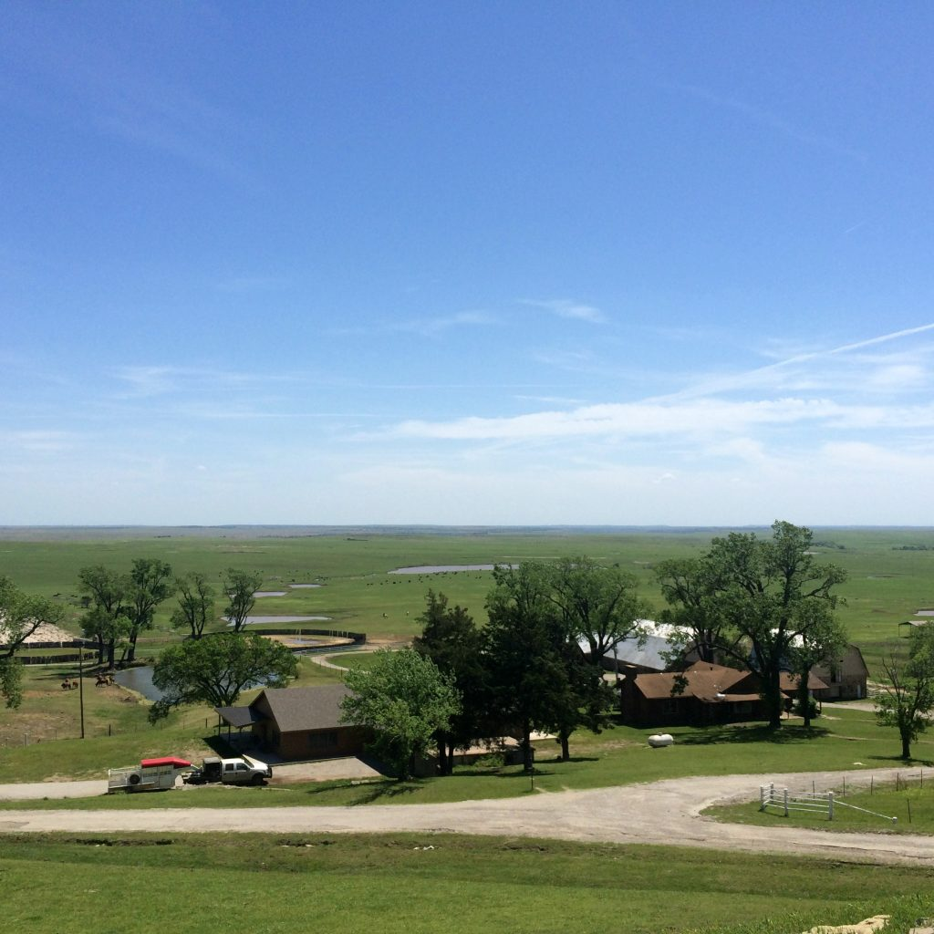 view from the deck of the Pioneer Woman Lodge