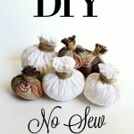 DIY No Sew Fabric Pumpkins {and what's coming soon}
