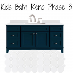 Kids Bath Reno Phase 3 The Plan
